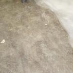 podovi-nastilki-hlebozavod-trakia (4)